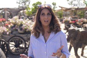 אומנות בגינה | עליזה כהן מעצבת פנים